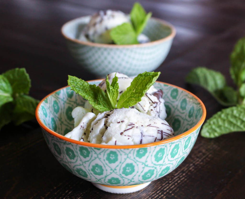 Fresh Mint Gelato with Chocolate Ripple   Yes to Yolks