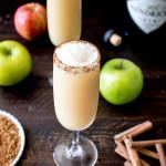 Apple Cider Gin Fizz | yestoyolks.com