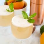 Triple Citrus Gin Spritzer | yestoyolks.com