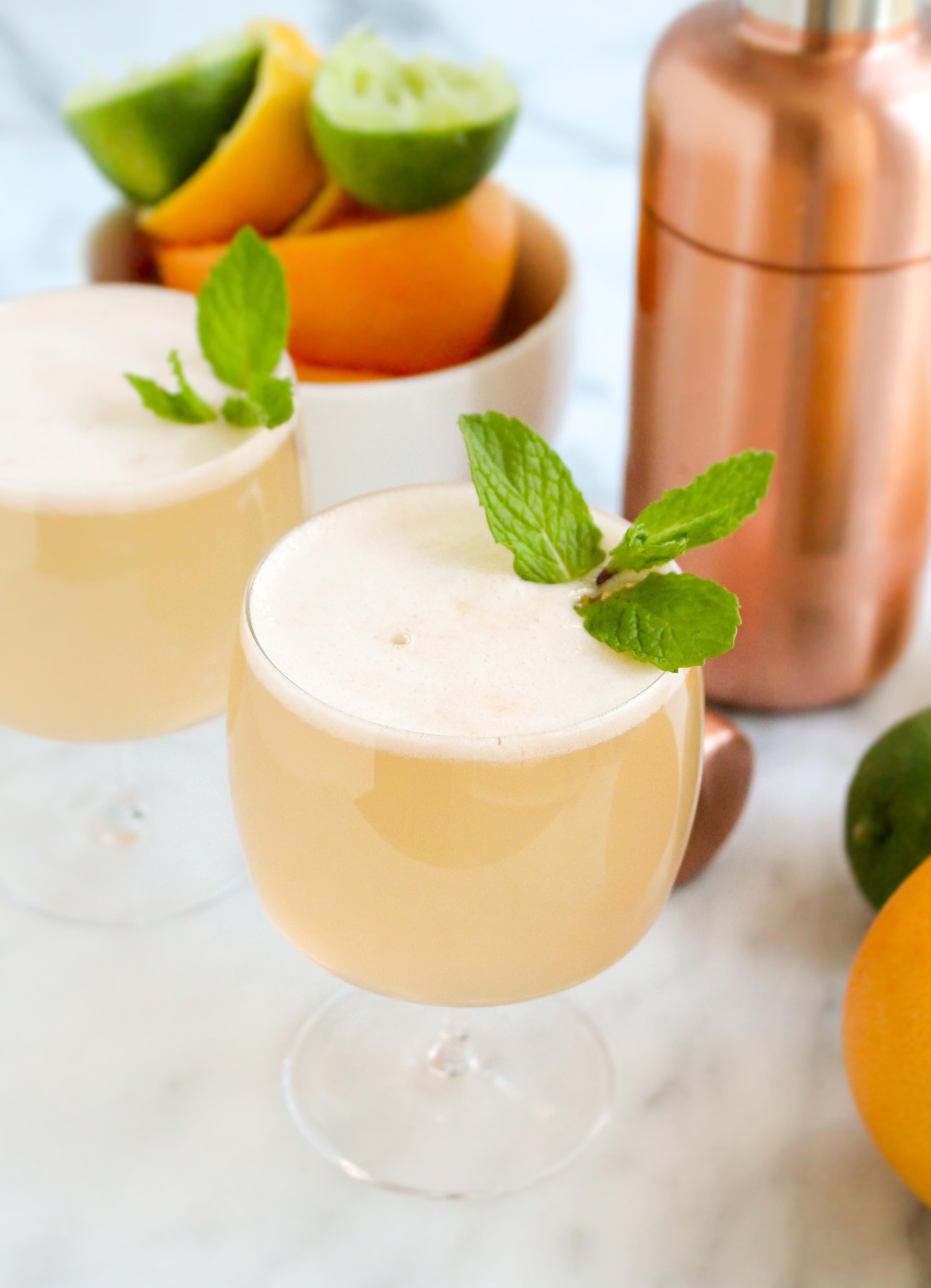 Triple Citrus Gin Spritzers