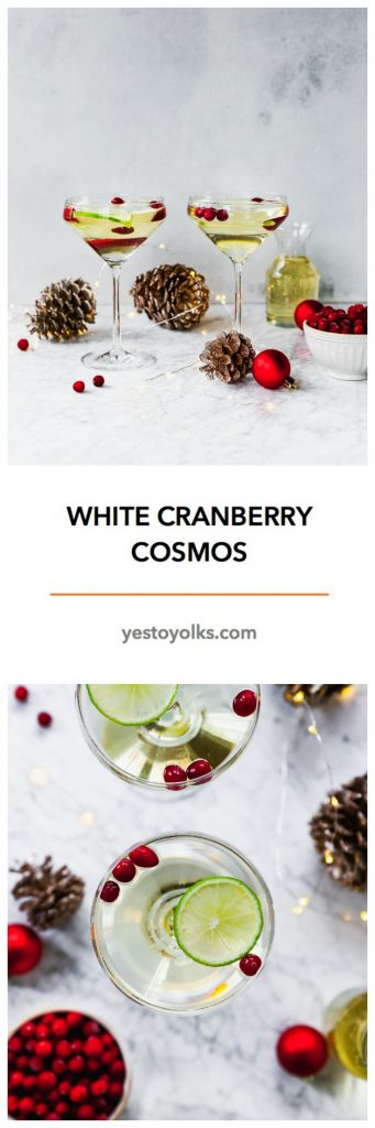 White Cranberry Cosmos